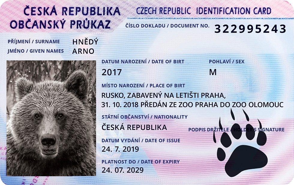 """Symbolické medvědí """"občanky""""."""