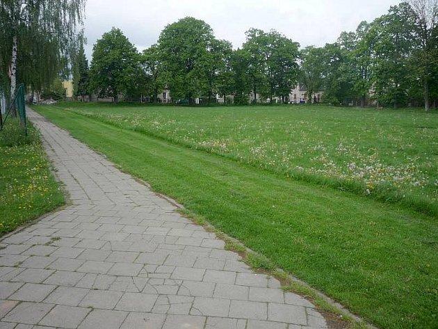 Zelená plocha mezi ulicemi Purkyňova a Farského v Hodolanech