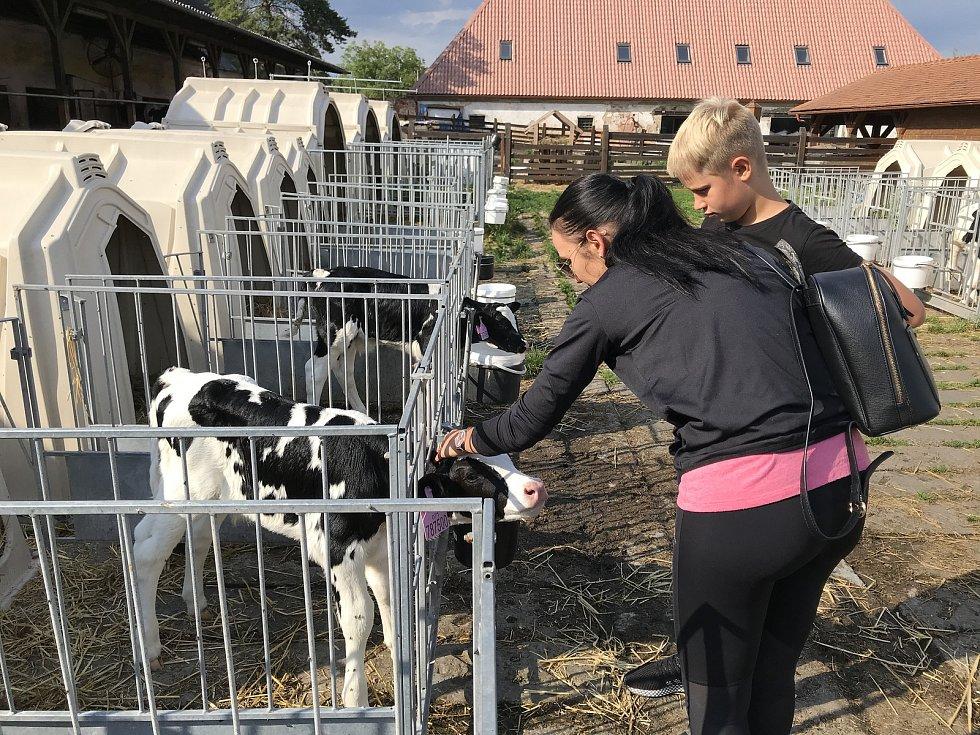Turistickým lákadlem je farma Doubravský dvůr v Července. 23. července 2020