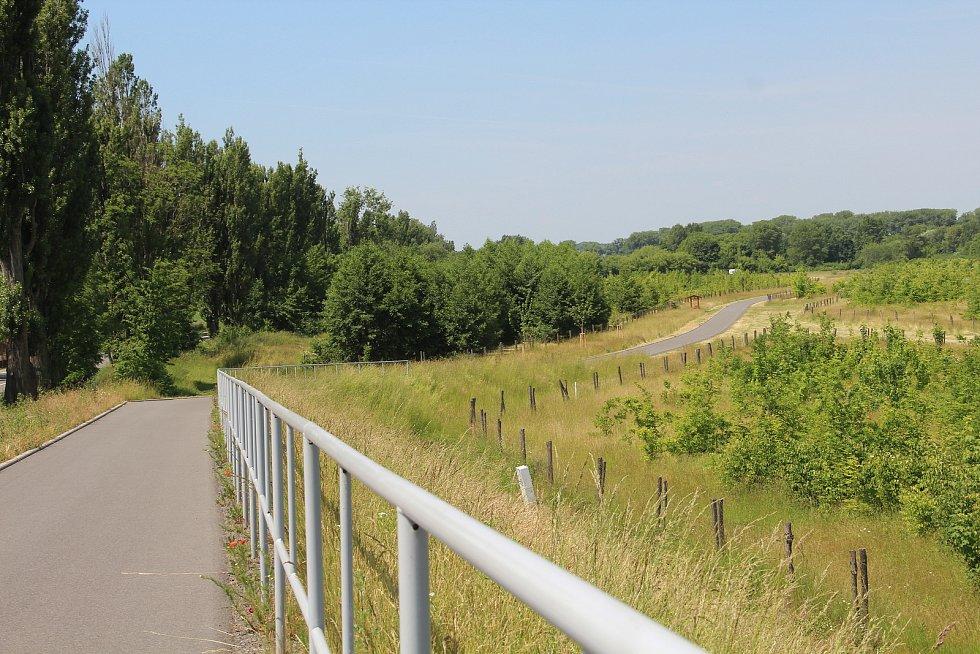 V lesoparku v Holici letos vznikne nový úsek cyklostezky, v dalších letech se počítá také s dětským hřištěm a venkovní posilovnou.