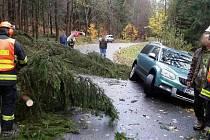 U Mutkova došlo k pádu stromu na auto