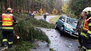 Odstraňováním následků silného větru v Olomouckém kraji