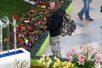 Na olomouckém výstavišti začala včera jarní etapa tradiční květinové výstavy. Návštěvníci mohou obdivovat křehkou krásu exponátů až do neděle.