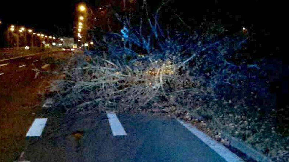 Následky silného větru v Olomouckém kraji v noci z 29. na 30. října 2018