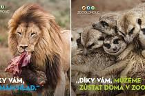 Zbrusu nový vizuál, kterým Zoo Olomouc děkuje adoptivním rodičům zvířat