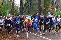 Běžci vyráží na trať