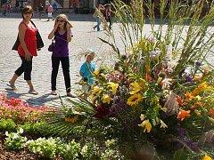 Květinové aranže na Horním náměstí v Olomouci. Ilustrační foto