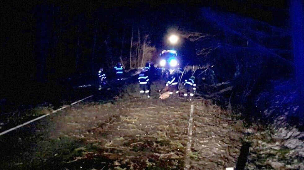 Následky silného větru na Jesenicku, 10. února 2020