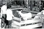 Výstava chovatelů. Pravidelně se v loučském zámeckém parku koná výstava drobného zvířectva. Fotografie z roku 1982.