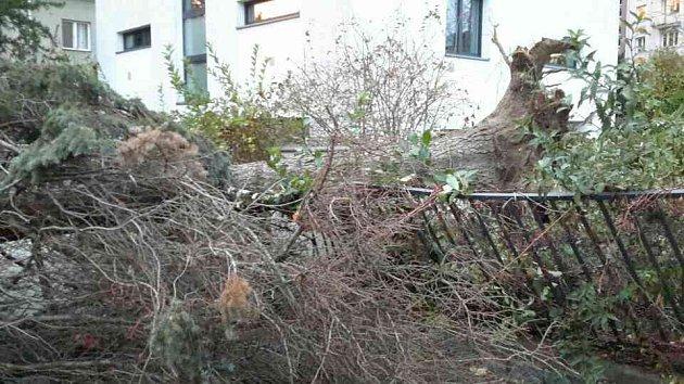 Řádění silného větru v Olomouckém kraji - 30. 10. 2018