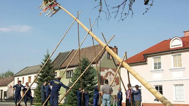 Slatiničtí dobrovolní hasiči se podílejí i na stavbě májky.