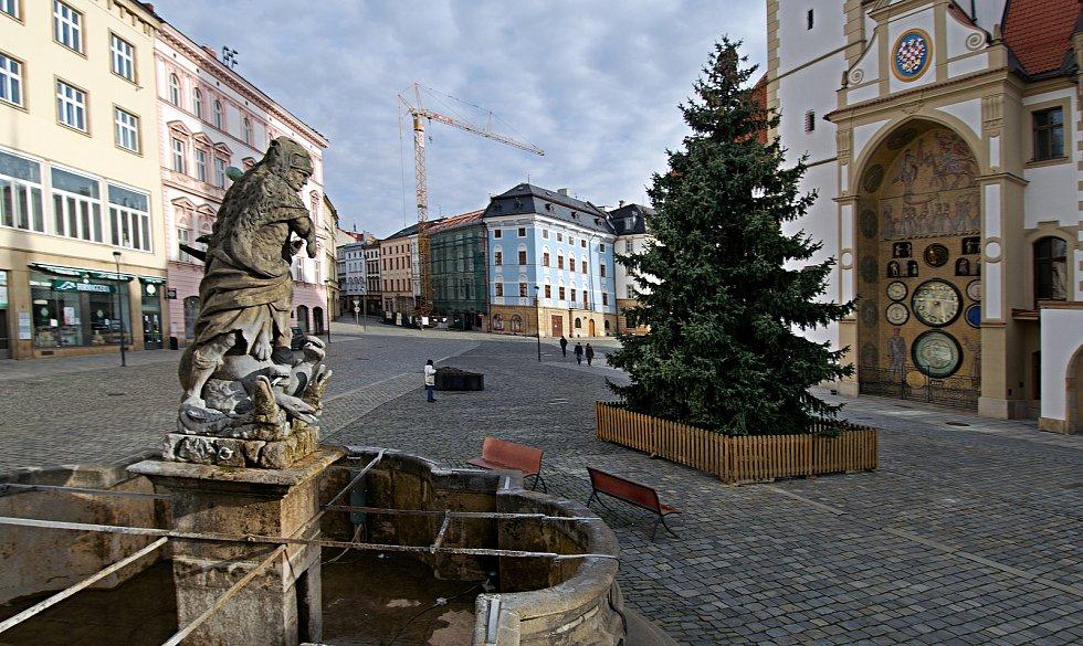 Vánoční strom na Horním náměstí v Olomouci