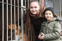 Psí útulek v olomoucké části Neředín se na Štěpána navětívili zájemci o adopci pejska i lidé, kteří opuštěná zvířata přišli obdarovat.