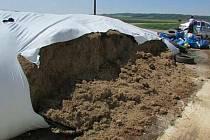 Poškozené vaky u kravína v Lutíně