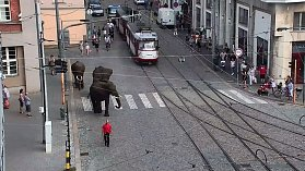 Sloní procházka v centru Olomouce - 19. června 2018
