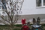 Velikonoční výzdoba Pavly Ledererové.