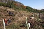 Pátrání po ztraceném houbaři v okolí Laškova