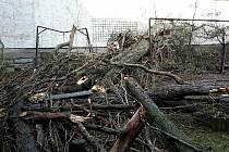 Následky silného větru v Olomouckém kraji, 11.2.2020