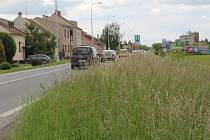 Nový úsek cyklostezky povede v zelených plochách podél Chválkovické ulice do Luční ulice