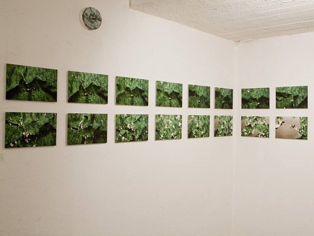 Galerie W7 v Olomouci