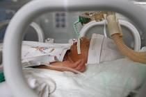 Inkubátor v olomoucké fakultní nemocnici