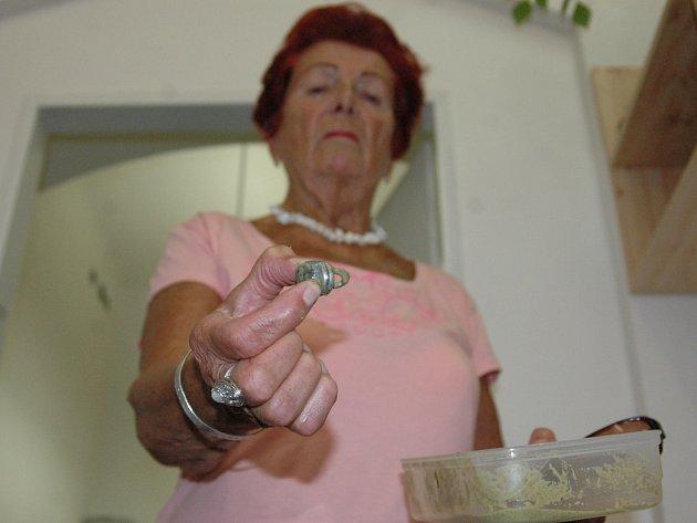 Květoslava Bejvlová našla v mraženém špenátu kovový visací zámek.