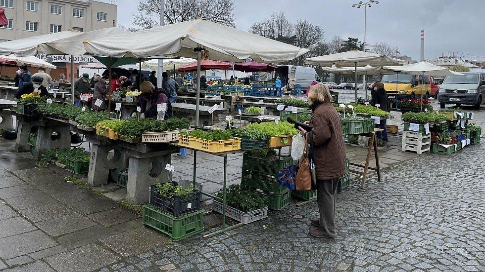 Sobotní trh v Olomouci, 17. dubna 2021