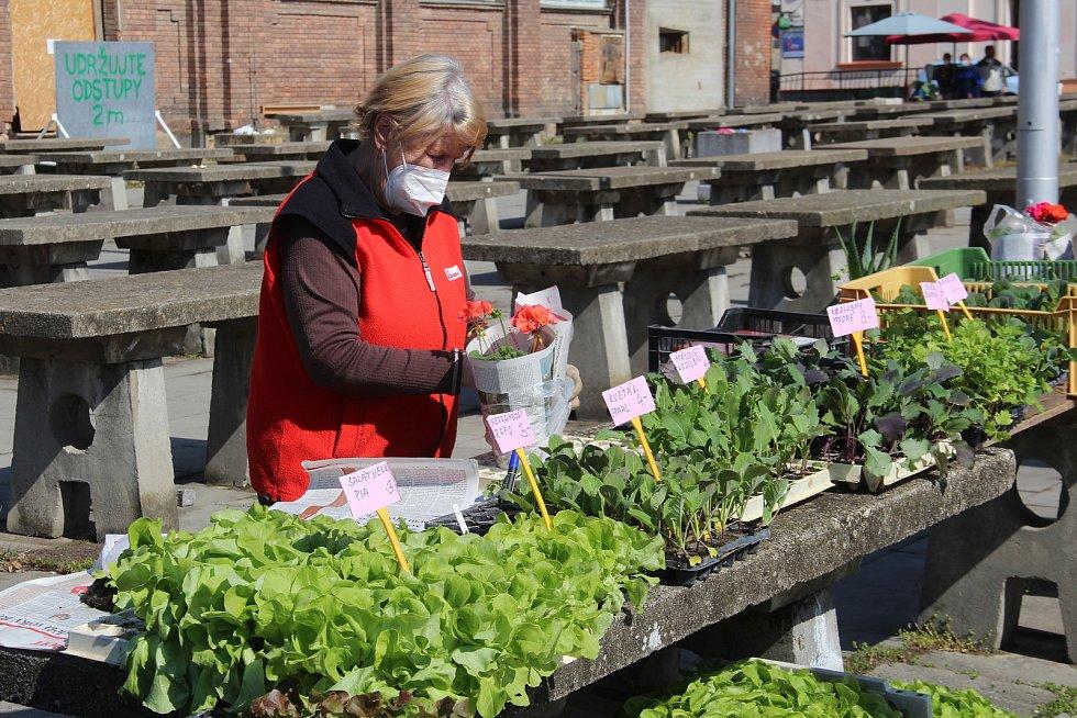 Marta Galková z Olomouce prodává na olomoucké tržnici přes padesát let.