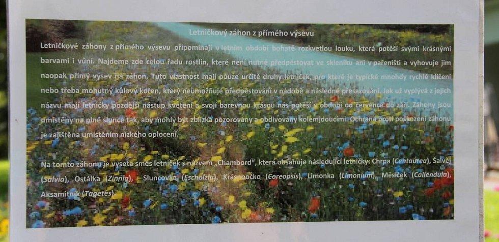 """Letničková """"louka"""" v Bezručových sadech v Olomouci"""