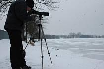 Jan Vidlař pozoroval a počítal na šumvaldských rybnících vodní ptáky.