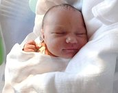 Emma Labounková, Bohuslavice, narozena 29. ledna v Olomouci, míra 50 cm, váha 3590 g.