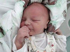 Mikuláš Hron, Bělkovice-Lašťany, narozen 8. února v Olomouci, míra 51 cm, váha 3670 g.