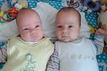 Anetka a Davídek Kargerovi, Náměšť na Hané, narozeni 3. září 2013 v Olomouci, míra 36 cm a 43 cm, váha 990 g a 1900 g.