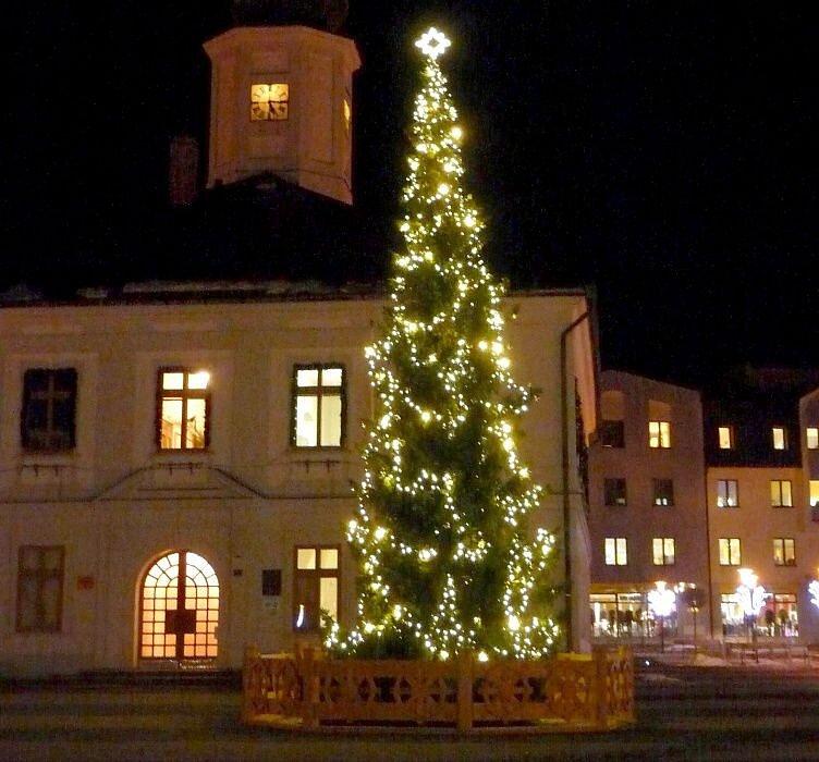 č.1 Jeseník, Masarykovo náměstí, smrk, 7,5 metru