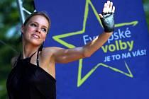 Kampaň pro eurovolby. Ilustrační foto