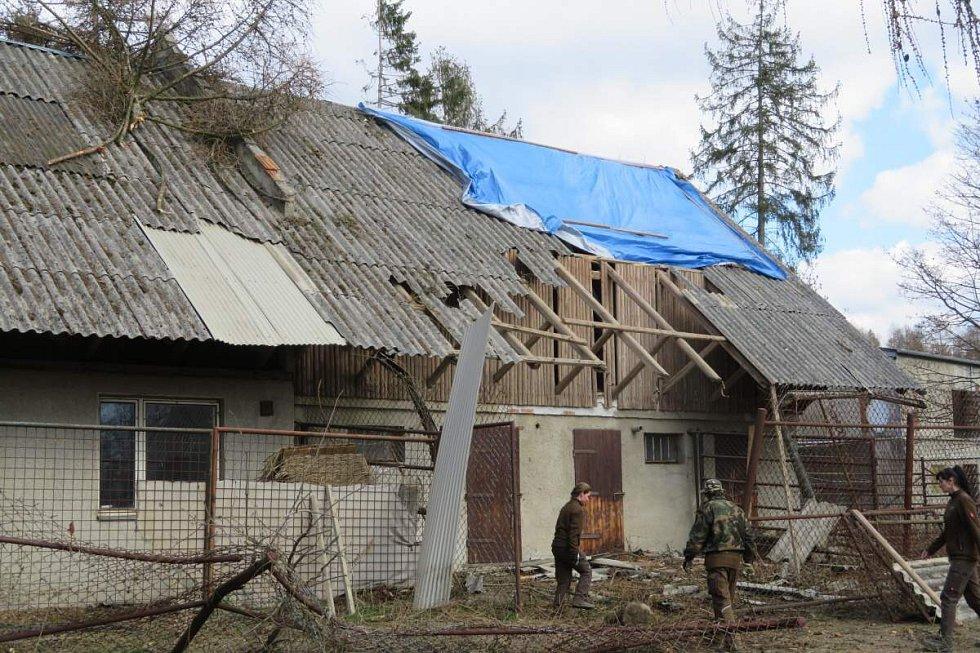 Pakoně. Odstraňování následků vichru v olomoucké zoo - 27.3.2019