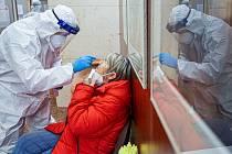Antigenní testování. Ilustrační foto