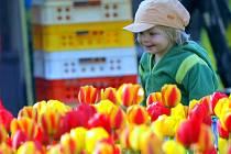 Na výstavě květin Flora Olomouc.