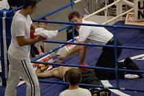 K.O. v kickboxerském ringu