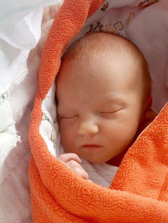 Zoe Milovová, Olomouc, narozena 11. dubna, míra 50 cm, váha 3080 g