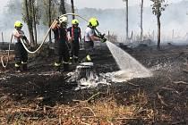 Požár lesa u obce Dolany na Olomoucku
