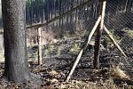 Hasiči během pondělí 6. dubna likvidovali požáry na devíti místech Olomouckého kraje. Požár u Vernířovic.