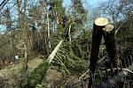 Zoologická zahrada na Svatém Kopečku u Olomouce poškozená vichřicemi. Konec března 2019