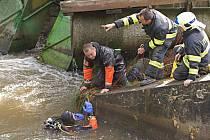 Pátrání po obětech neštěstí na vodáckém školním výletě po Mlýnském potoku v Olomouci