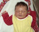 Agáta Gottliebová, Červenka, narozena 23. října ve Šternberku, míra 51 cm, váha 3670 g