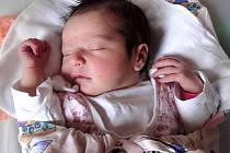 Sofie Urbancová, Olšany u Prostějova, narozena 29. prosince v Olomouci, míra 50 cm, váha 3510 g.