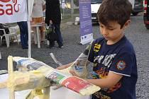 Do soutěže s Olomouckým deníkem se na letošním majálesu zapojily desítky dospělých i dětí. Ze starých novin vyráběli umělecká díla.