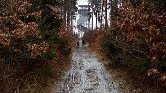 Na Velký Kosíř dnes i přes mrazivé a větrné počasí vyrazily desítky lidí. Na to, že rozhledna je z havarijních důvodů měsíce uzavřena, neupozorňuje pěší na turistických stezkách žádná cedule. (tau)