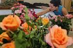 Poslední přípravy na Letní Floru 2013