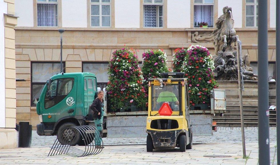 Instalace květinových pyramid u radnice na Horním náměstí v Olomouci, 22. června 2021